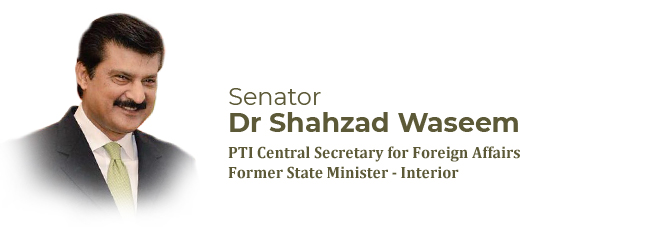 Biography - Dr Shahzad Waseem